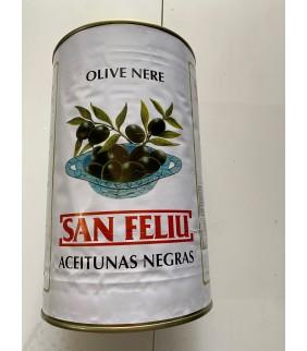 Olive nere denocciolate in...